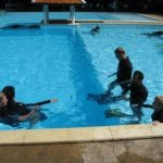 PADI IDC Thailand - Pool for Rescue Course skills training